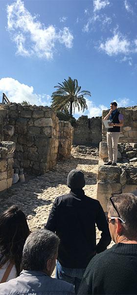 tel-megiddo